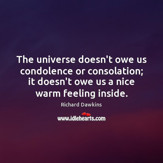 The universe doesn't owe us condolence or consolation; it doesn't owe us Richard Dawkins Picture Quote