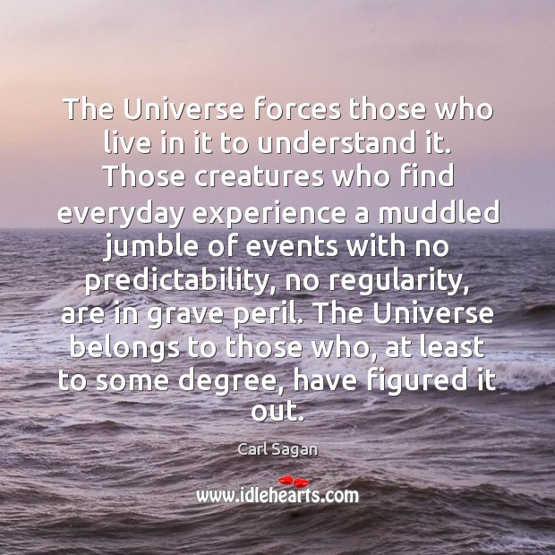 Image, The Universe forces those who live in it to understand it. Those