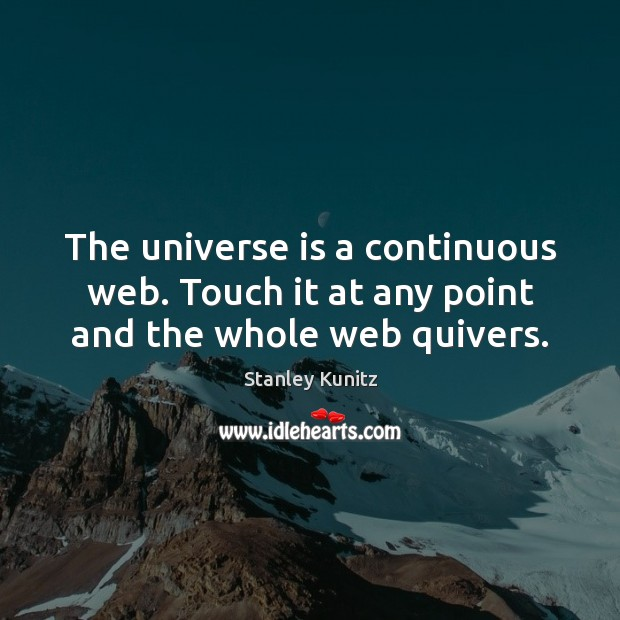 The universe is a continuous web. Touch it at any point and the whole web quivers. Image