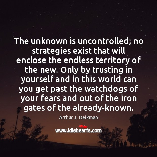 Image, The unknown is uncontrolled; no strategies exist that will enclose the endless