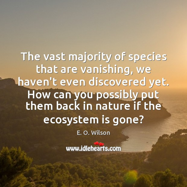 Image, The vast majority of species that are vanishing, we haven't even discovered