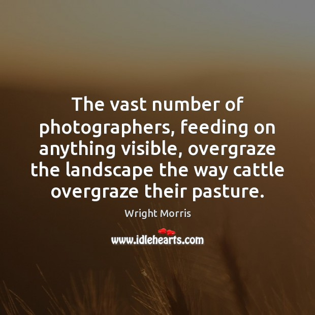 Wright Morris Picture Quote image saying: The vast number of photographers, feeding on anything visible, overgraze the landscape