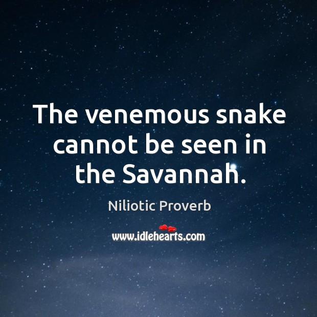 Niliotic Proverbs