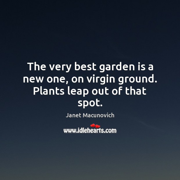 The very best garden is a new one, on virgin ground. Plants leap out of that spot. Janet Macunovich Picture Quote