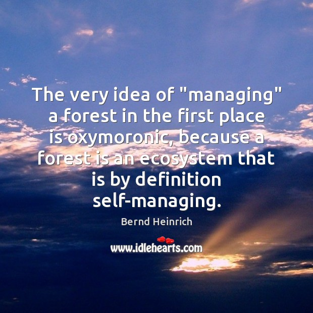 "Image, The very idea of ""managing"" a forest in the first place is"