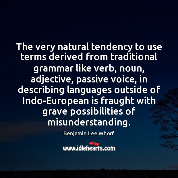 The very natural tendency to use terms derived from traditional grammar like Misunderstanding Quotes Image