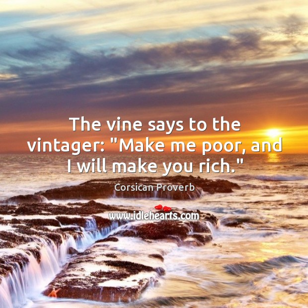 "Image, The vine says to the vintager: ""make me poor, and I will make you rich."""