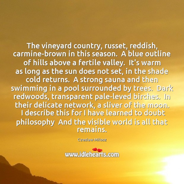 The vineyard country, russet, reddish, carmine-brown in this season.  A blue outline Czeslaw Milosz Picture Quote