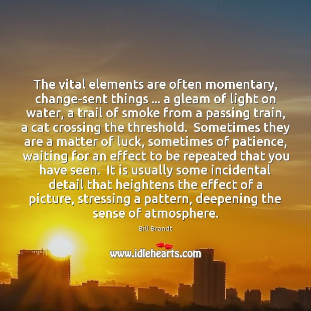 Image, The vital elements are often momentary, change-sent things … a gleam of light