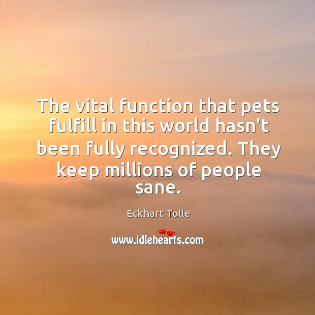 The vital function that pets fulfill in this world hasn't been fully Image