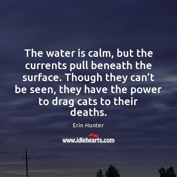 The water is calm, but the currents pull beneath the surface. Though Erin Hunter Picture Quote