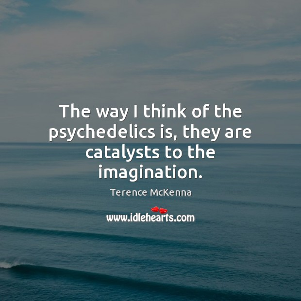 The way I think of the psychedelics is, they are catalysts to the imagination. Image