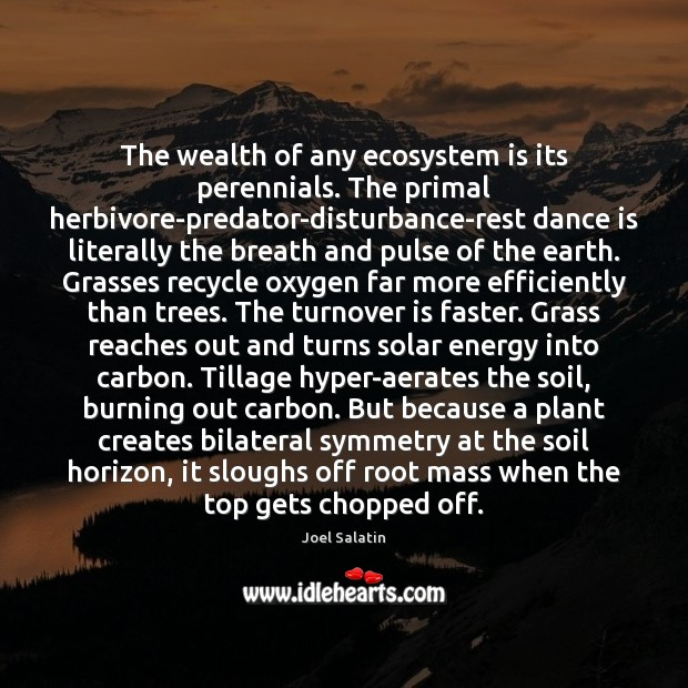 The wealth of any ecosystem is its perennials. The primal herbivore-predator-disturbance-rest dance Joel Salatin Picture Quote