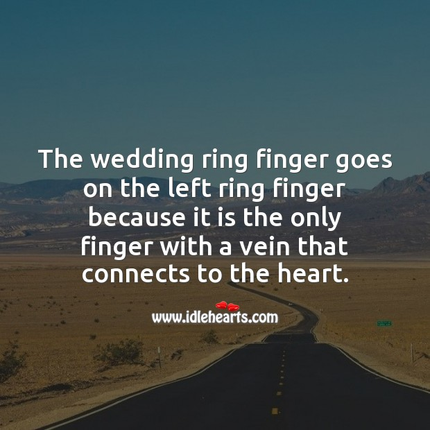 The wedding ring finger goes on the left ring finger because Marriage Quotes Image