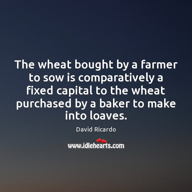 The wheat bought by a farmer to sow is comparatively a fixed David Ricardo Picture Quote