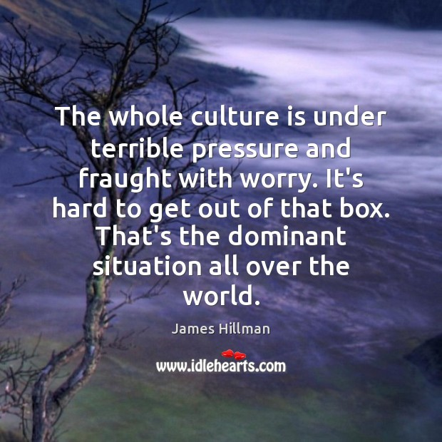 The whole culture is under terrible pressure and fraught with worry. It's James Hillman Picture Quote