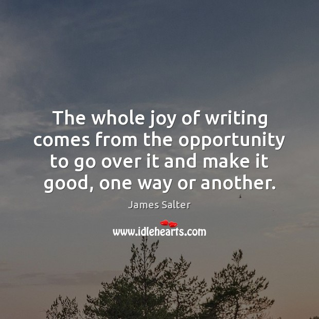 The whole joy of writing comes from the opportunity to go over James Salter Picture Quote
