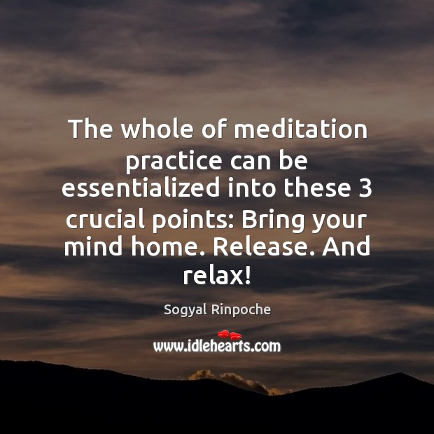The whole of meditation practice can be essentialized into these 3 crucial points: Sogyal Rinpoche Picture Quote