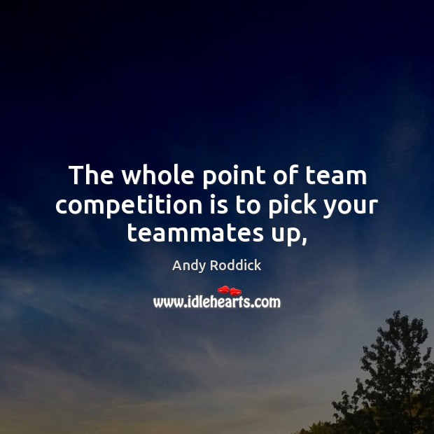 The whole point of team competition is to pick your teammates up, Andy Roddick Picture Quote