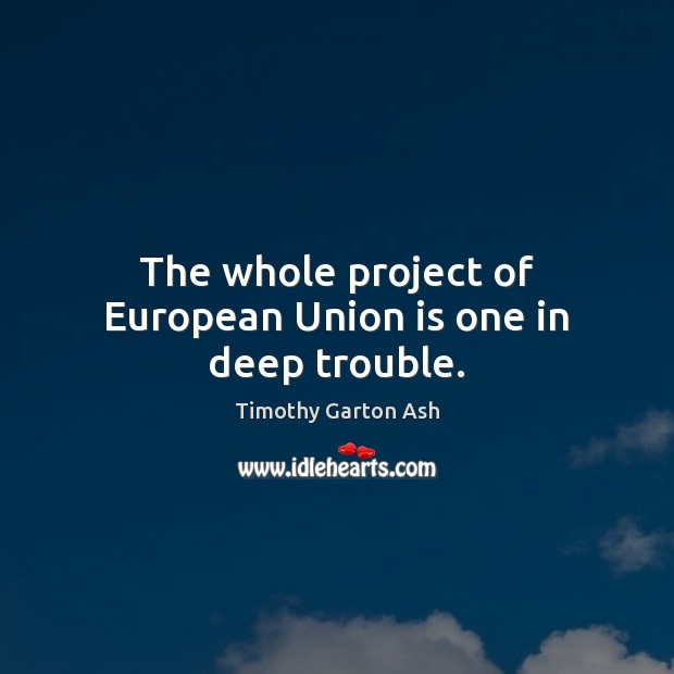 The whole project of European Union is one in deep trouble. Union Quotes Image