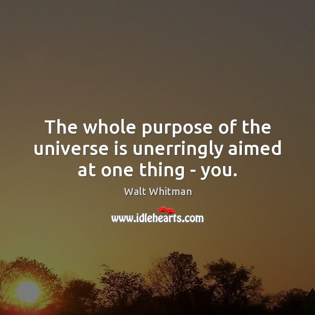 The whole purpose of the universe is unerringly aimed at one thing – you. Image