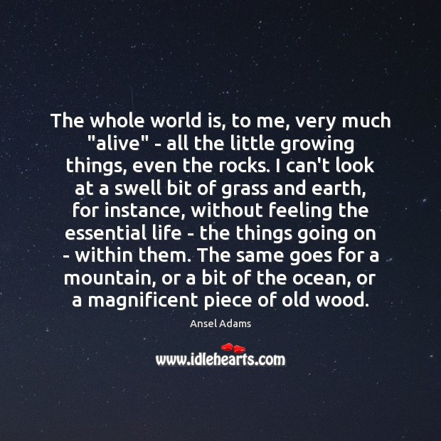 "Image, The whole world is, to me, very much ""alive"" – all the"