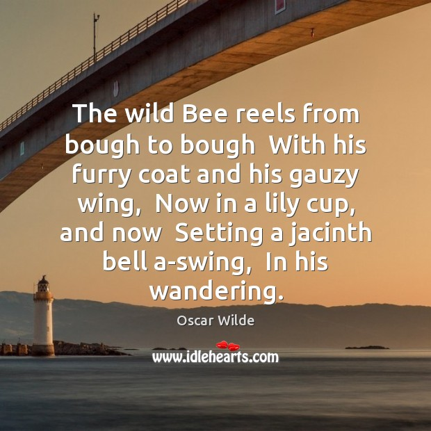 Image, The wild Bee reels from bough to bough  With his furry coat