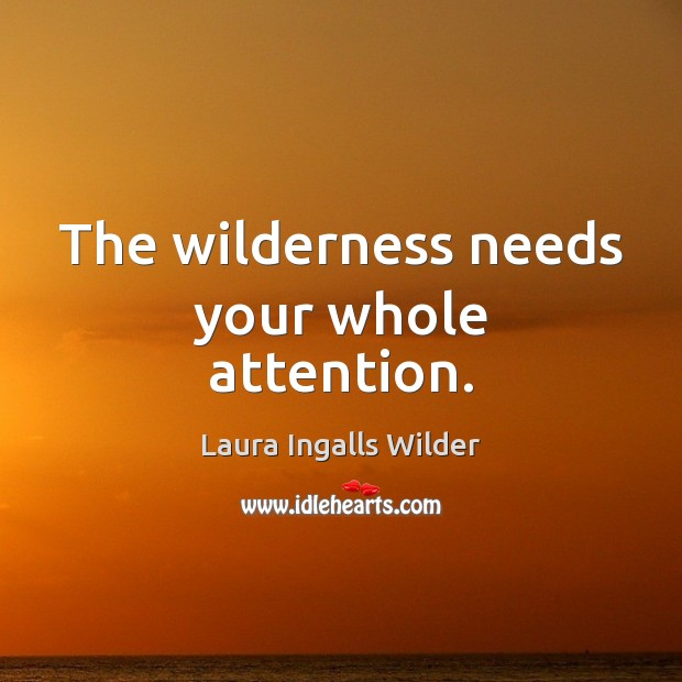 Image, The wilderness needs your whole attention.
