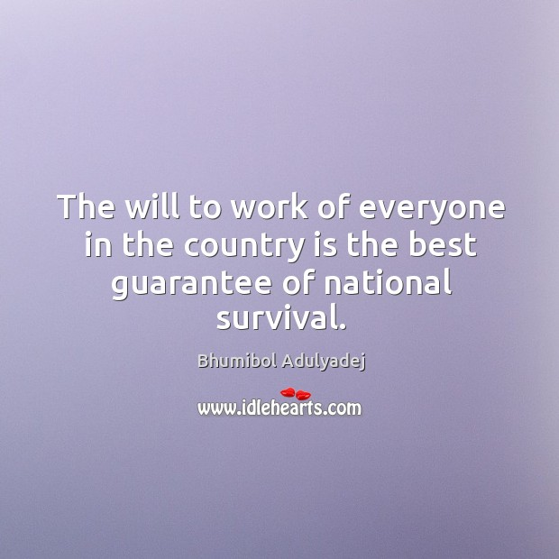 The will to work of everyone in the country is the best guarantee of national survival. Image