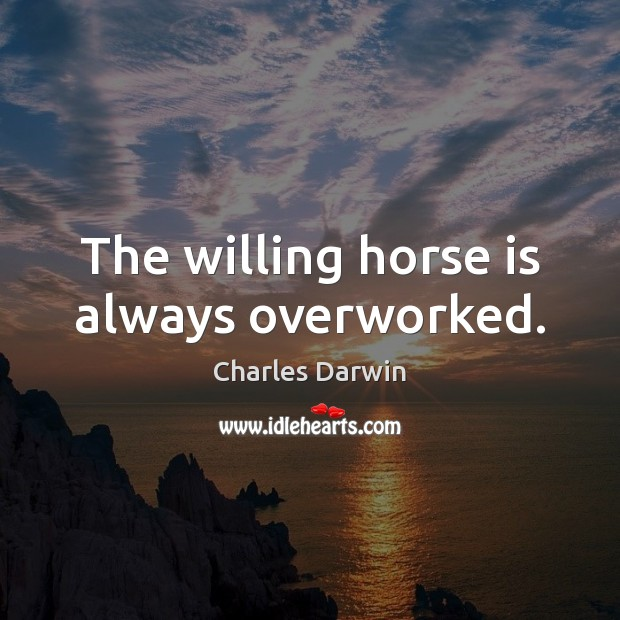 The willing horse is always overworked. Image