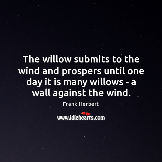 Image, The willow submits to the wind and prospers until one day it