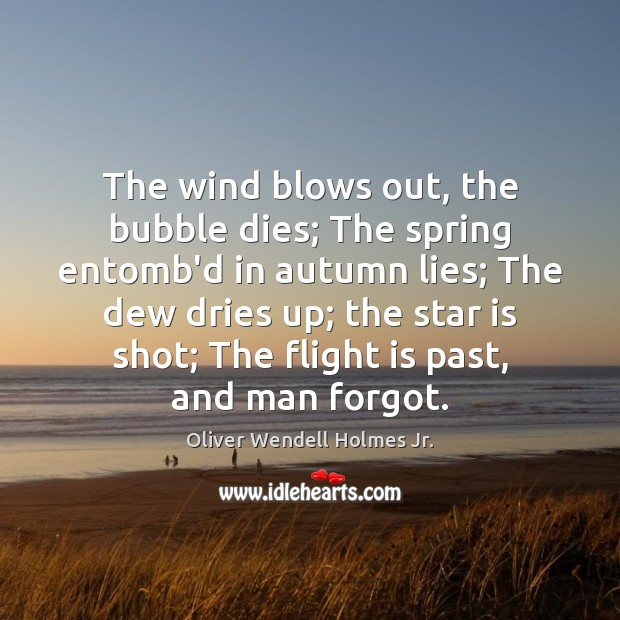 The wind blows out, the bubble dies; The spring entomb'd in autumn Oliver Wendell Holmes Jr. Picture Quote