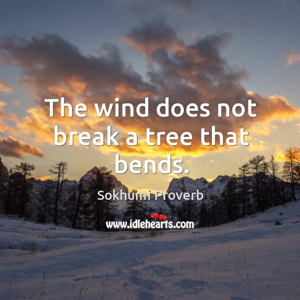 The wind does not break a tree that bends. Sokhumi Proverbs Image