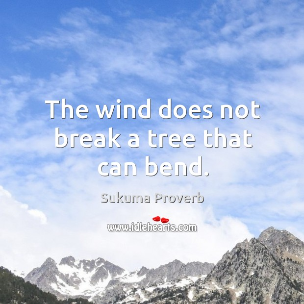 The wind does not break a tree that can bend. Sukuma Proverbs Image