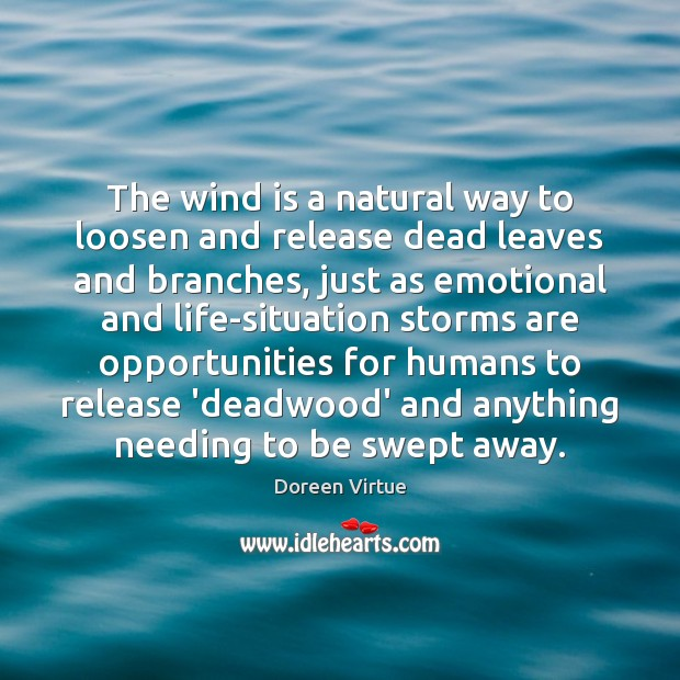 Image, The wind is a natural way to loosen and release dead leaves