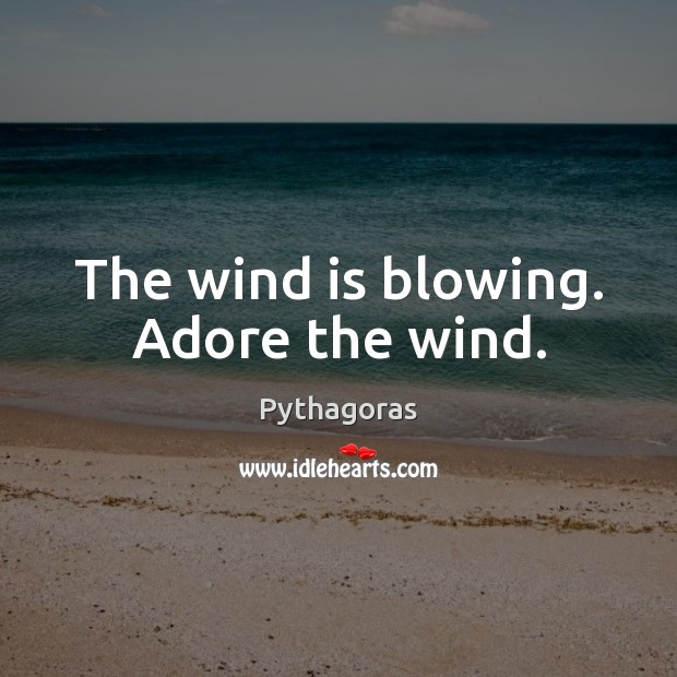 Image, The wind is blowing. Adore the wind.