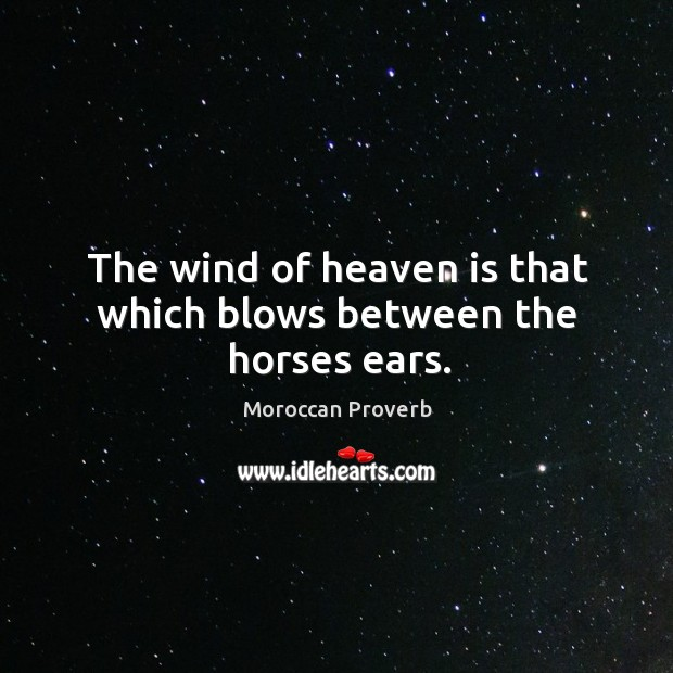 The wind of heaven is that which blows between the horses ears. Moroccan Proverbs Image