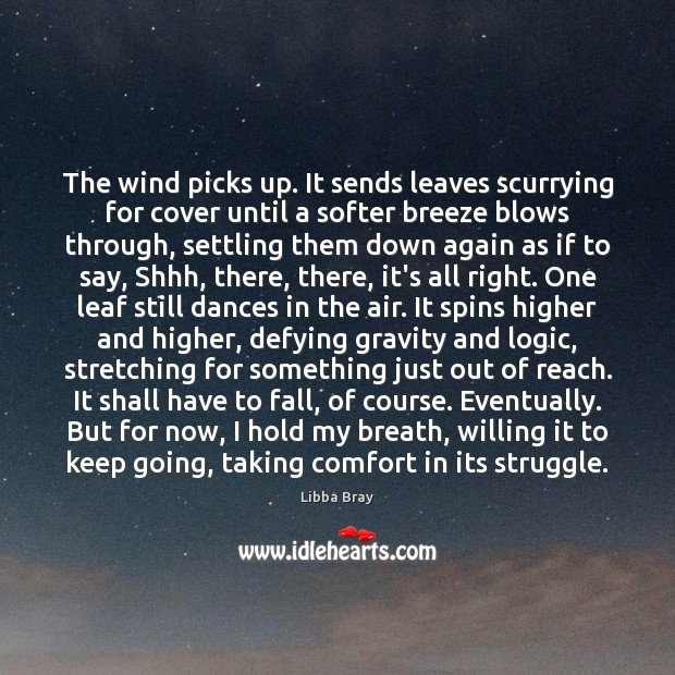 Image, The wind picks up. It sends leaves scurrying for cover until a