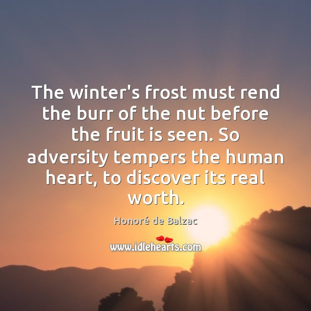 The winter's frost must rend the burr of the nut before the Image