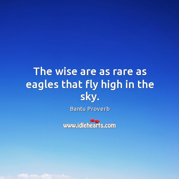 The wise are as rare as eagles that fly high in the sky. Bantu Proverbs Image