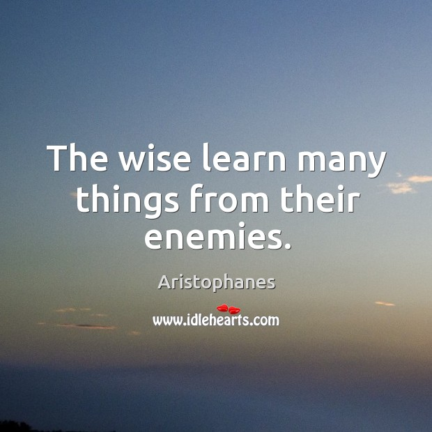 Image, The wise learn many things from their enemies.