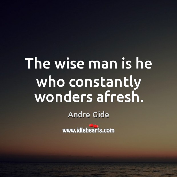 The wise man is he who constantly wonders afresh. Image
