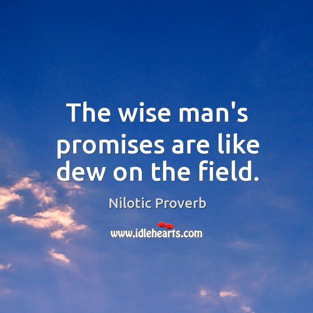 The wise man's promises are like dew on the field. Nilotic Proverbs Image