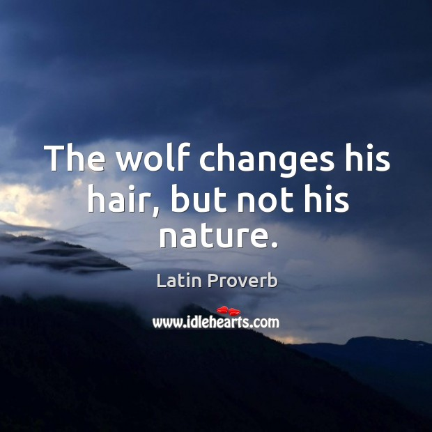 The wolf changes his hair, but not his nature. Image