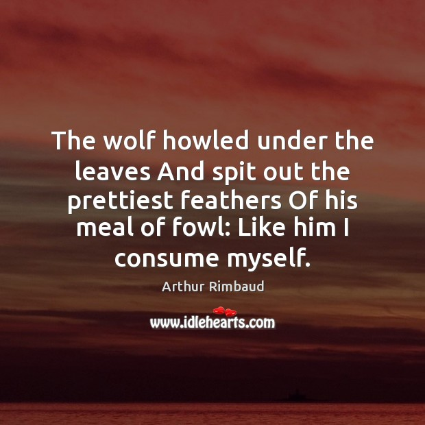 Image, The wolf howled under the leaves And spit out the prettiest feathers