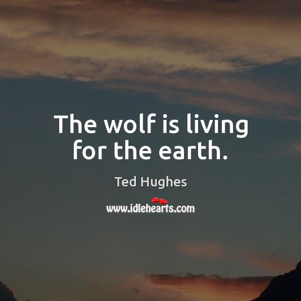 The wolf is living for the earth. Ted Hughes Picture Quote