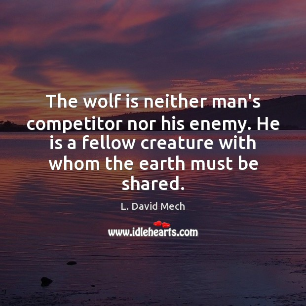 The wolf is neither man's competitor nor his enemy. He is a Image