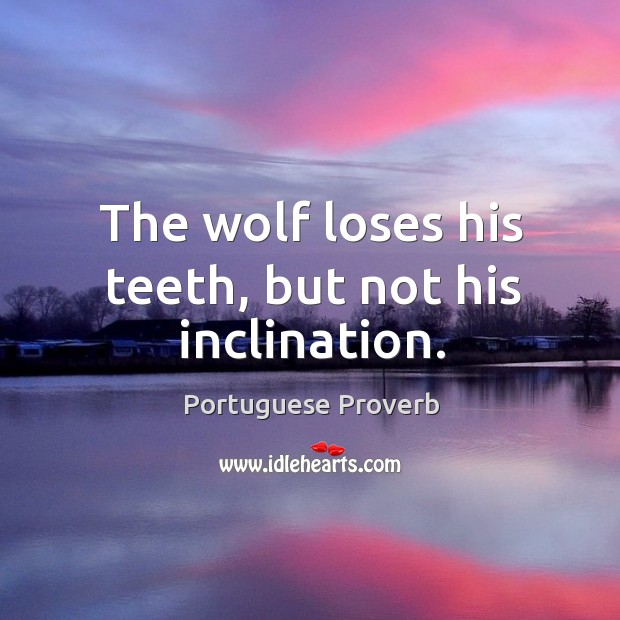 The wolf loses his teeth, but not his inclination. Image