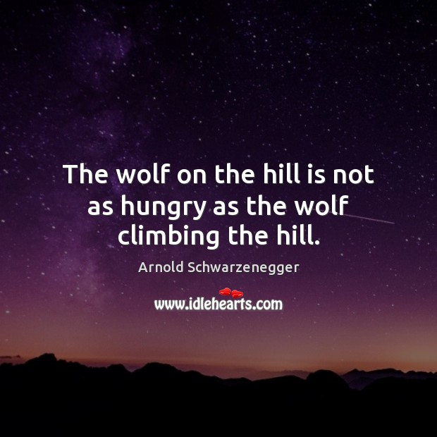 The wolf on the hill is not as hungry as the wolf climbing the hill. Arnold Schwarzenegger Picture Quote