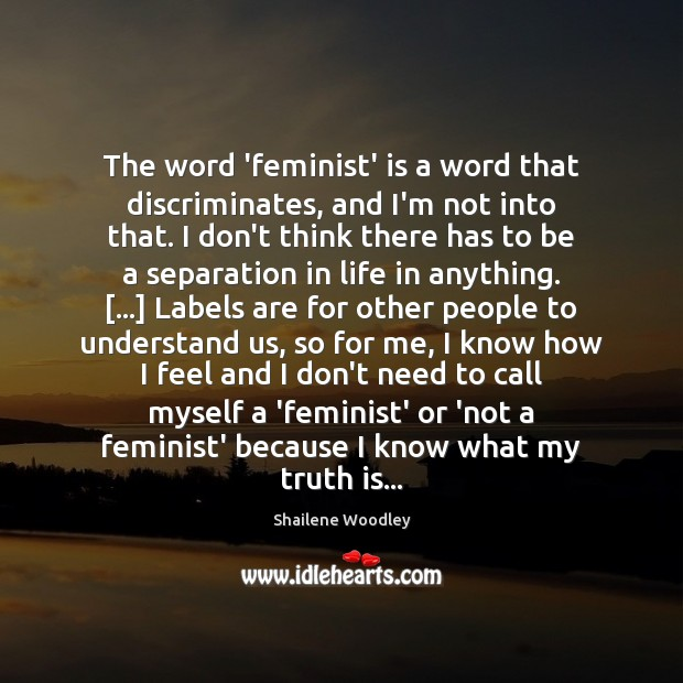 The word 'feminist' is a word that discriminates, and I'm not into Image